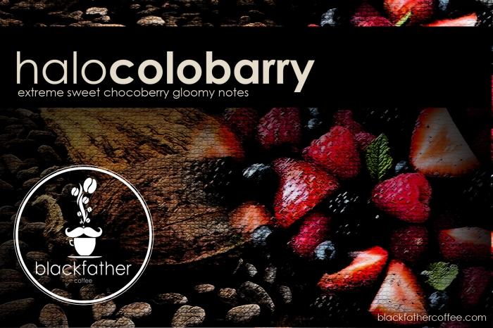 HALOCOLOBARRY - Copy copy